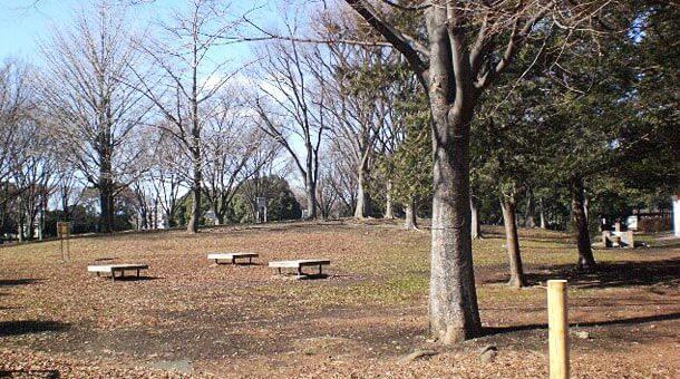都立赤塚公園バーベキュー場でバーベキュー