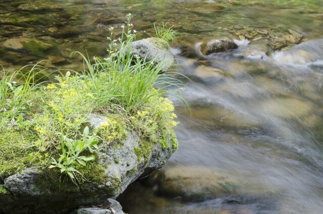 川のせせらぎ