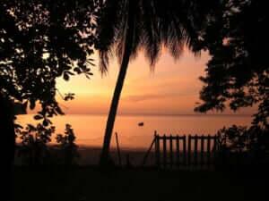 夜の海辺でバーベキュー