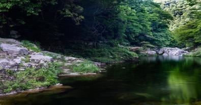 清流河川敷